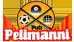 Pelimanni